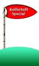 24-hour-special-flag