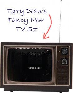 TV-234x300a